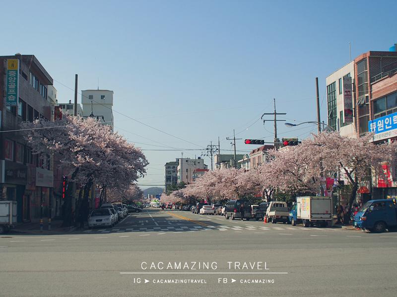 CaCamazing-RomanticBridge28