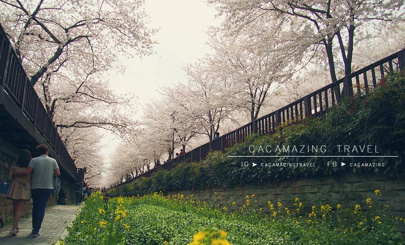 CaCamazing-RomanticBridge43