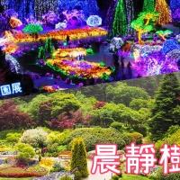 【美景推薦】韓國晨靜樹木園|五色星光庭園展|包餵飽相機 靚到喊(更新2018-19優惠券)|吃貨伴旅 CACAmazing Travel