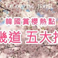 【韓國京畿道櫻花景點】五大推薦熱門景點|吃貨伴旅 CACAmazing Travel