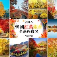【韓國紅葉】首爾、近郊|超多超靚 紅葉、銀杏景點推介|吃貨伴旅 CACAmazing Travel