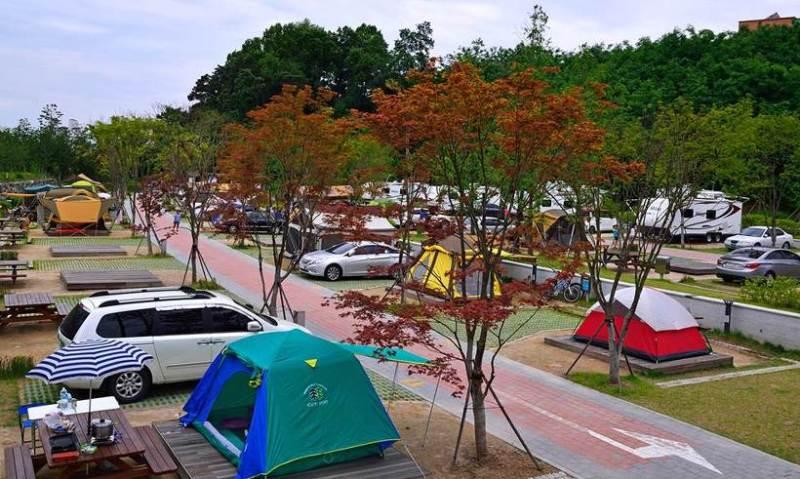 Credit|sotongsamsung.com