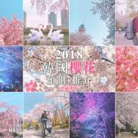 【韓國櫻花2018】櫻花預測 + 開花景點追蹤記錄|吃貨伴旅 CACAMAZING TRAVEL